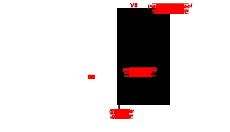 Parasympathetic Branches Of The Facial Nerve